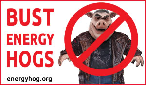 Bust Energy Hogs
